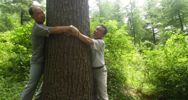 Researchers on a reforestation delegation study tour to China