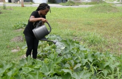 Young person in New Orleans community garden with watering can