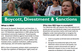 Boycott, divestment & sanctions handout