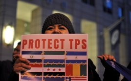 """person holding a """"Protect TPS"""" sign"""