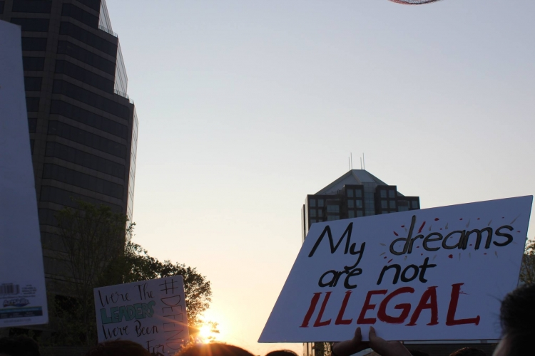 My dreams are not illegal sign