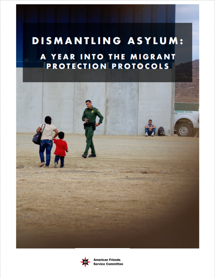 Dismantling Asylum cover to report