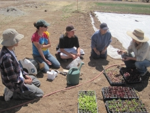 Jenny teaches a group of people how to transplant plants