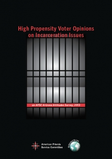 High propensity voter opinions on incarceration issues