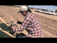 Sol y Tierra growers in Anthony, New Mexico