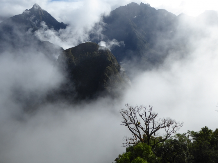 The mountains surrounding Machu Picchu in the morning fog
