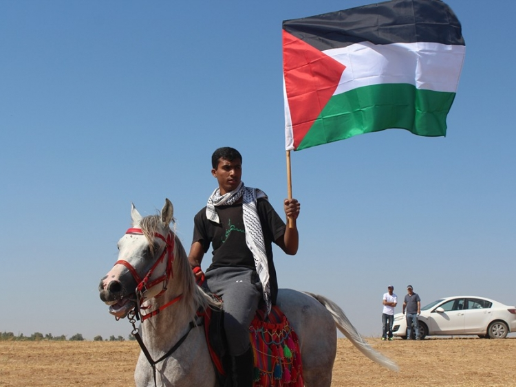 Man on horse carrying Palestinian flag